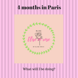 4 months in Paris